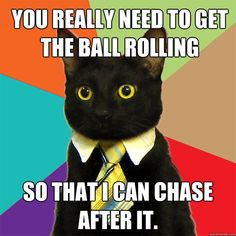 41 best business cat images on pinterest in 2018 funny memes