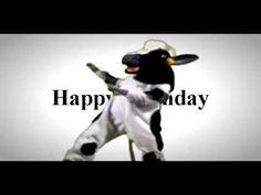 Happy Birthday break Dancing Cow