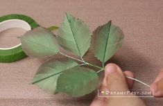 How to make tissue paper rose, free template, step by step paper rose leaves tutorial Paper Flowers Roses, Rolled Paper Flowers, Paper Flowers Craft, How To Make Paper Flowers, Paper Leaves, Giant Paper Flowers, Faux Flowers, Flower Crafts, Diy Flowers