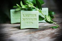 LAURUS NOBILIS 40% Laurus Nobilis, Place Cards, Aqua, Place Card Holders, Water, Layering
