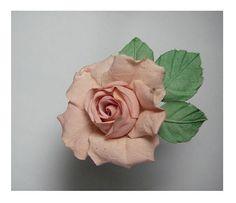 Rose   Flickr - Photo Sharing!