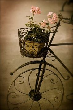 Fantastic garden bicycle for displaying your favorite flowers!