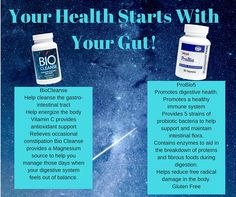 Almost 70% of our immune system cells are located in the gut, and optimal health starts with a healthy digestive system.