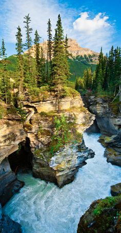 Glacial canyon in Banff National Park ~ Alberta, Canada • by MaddyCow