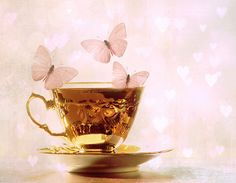 delicate gold teacup pink pastel butterflies