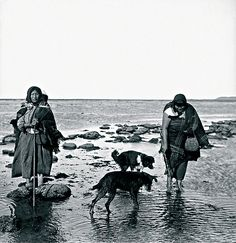 Selk´nam women with their dogs looking for clams in Cabo Peñas, south of the Río Grande, Isla Grande, Tierra del Fuego, Native American Photos, Native American Indians, Patagonia, Southern Cone, Australian Aboriginals, Melbourne Museum, Canadian Culture, Famous Pictures, Brave
