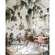 Wildernis Amsterdam #plants #Scandi #planter #decor #home #patio #deck