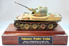 Image result for panther coelian