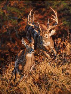 """Ryan Kirby Art — Original White-tailed Deer Painting """"Turn and Burn"""" by Ryan Kirby Wildlife Paintings, Wildlife Art, Animal Paintings, Animal Drawings, Deer Paintings, Whitetail Deer Pictures, Deer Photos, Deer Pics, Deer Wallpaper"""