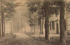 Meerboomweg Hollandscheveld