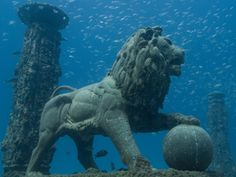Neptune Memorial Reef, off the coast of Florida is an underwater cemetery city that will eventually be able to accomodate more than people. The artificial reef attracts tropical fish and scuba divers and s sessigned to withstand a category 4 hurricane. Underwater City, Underwater Sculpture, Underwater Photos, Underwater Photography, Film Photography, Street Photography, Landscape Photography, Nature Photography, Fashion Photography