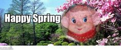 Facebook - Cover - Springtime
