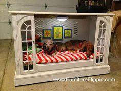 muble-convertido-en-casa-para-perro