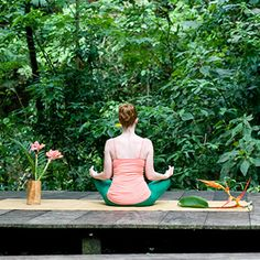 meditating in the tropical rainforest