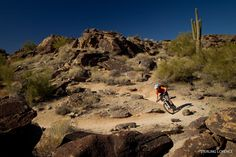 South Mountain, Arizona.  Incredible riding right next to Phoenix.  Beware of the barrel cactus...