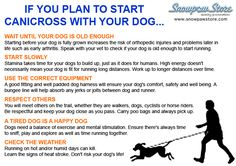 If you plan to start #canicross with your dog...