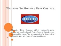 Trusted Pest Control Services in Delhi-NCR | Mourier