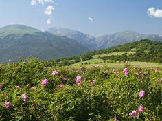 Опознай красотата на България