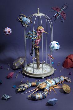 Cabinet de Curiosités by Zim And Zou , via Behance