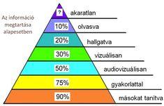 Élet+Stílus: Gyarmathy Éva: Az ideális iskola hat jellemzője - HVG.hu