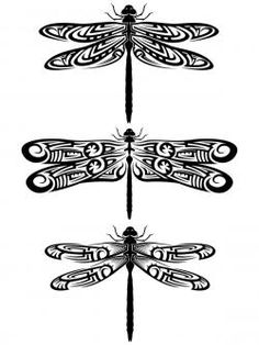 Dragonfly Wings   patterned wings instead of using realistic wings for your tat