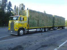 Big Rig Trucks, Semi Trucks, Cool Trucks, Freightliner Trucks, Peterbilt 379, Road Train, Farming, Tractors, Diesel