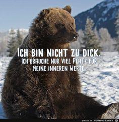 lustiges Bild 'nicht zu dick.jpg'- Eine von 25643 Dateien in der Kategorie 'witzige Bilder' auf FUNPOT.