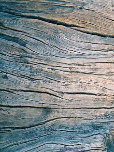 Envers du Decor - blue curved wood