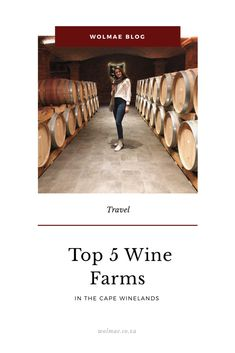 Top 5 Wine Farms or Estates in the Cape Winelands that you need to vist when you are in Cape Town. Groot Constantia, Spier, Spice Route and La Motte. Wine Tasting, Farms, South Africa, Cape, Blog, Travel, Mantle, Homesteads, Cabo