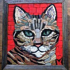Wazza #tabbycat #smileycat #stripeycat #stripeyjoy #mosaic