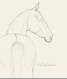 馬 - Trend Pencil Drawings 2020 Horse Drawings, Pencil Art Drawings, Cool Art Drawings, Realistic Drawings, Art Drawings Sketches, Cartoon Drawings, Drawing Ideas, Horse Face Drawing, Easy Horse Drawing