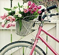 931f7c4cfad59b9340eb262123b7910d-just love a bike with a basket:)
