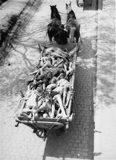 Carts laden with corpses pass through the town of Dachau on route to a nearby burial site. Allied authorities required local farmers to drive their loaded carts through the town of Dachau while residents were made to watch.