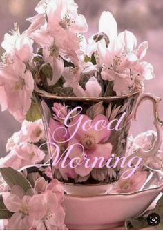 Explore the beautiful good morning image ideas Good Morning Prayer, Good Morning My Friend, Good Morning My Love, Good Morning World, Morning Blessings, Good Morning Picture, Good Morning Messages, Good Morning Wishes, Good Morning Quotes