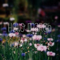 Mangiatrice di LIBRI.: Bye February, Hello March.