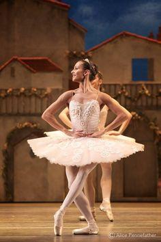 """©️ Alice Pennefather / The Ballet Bag Francesca Hayward, """"Don Quixote"""", The Royal Ballet Ballet Images, Ballet Pictures, Ballet Photos, Dance Pictures, Francesca Hayward, Ballet Dancers, Ballet Bag, Bolshoi Ballet, Ballerinas"""