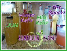 Bottling Kombucha, Jun, Water Kefir, and Milk Kefir Safely at All Times of Year