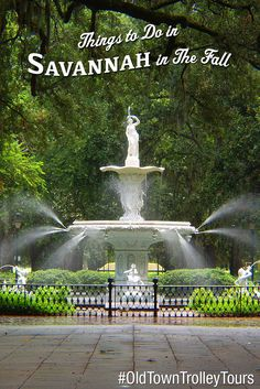 Things To Do In Savannah In The Fall by Old Town Trolley. #OldTownTrolley #Savannah #Sightseeing