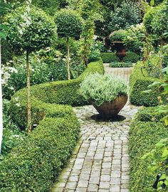 I like the following ideas - Would love to see this done with a red brick pathway, Lavender hedges instead of stinky Boxwood and a Rosemary topiary or Golden Bay tree in the bowl planter. That would be amazing!