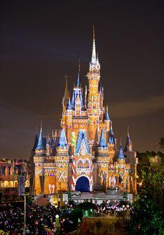 disney world | Disney World's Magic Kingdom To Sell Beer And Wine