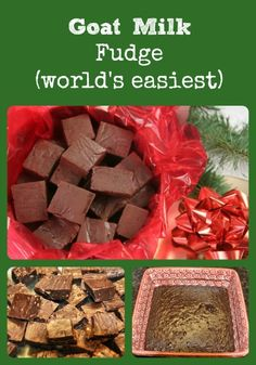 A goat milk fudge recipe that's super easy and turns out great every time via Better Hens and Gardens.