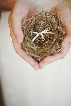 bird's nest ring holder