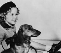 Shirley Temple and dachshund; My momma loved Shirley Temple and so did @Wren@Lindley Presley @Jennifer Carr and me!