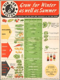Here are some comparisons about a victory garden then and now. Know the history, crops they grew in old victory gardens, our spoiled modern day gardening, and a crop list and planning to grow a modern victory garden. Veg Garden, Edible Garden, Garden Plants, Potager Garden, Garden Beds, Allotment Gardening, Organic Gardening, Gardening Tips, Vegetable Gardening
