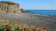 Ψαρή Φοράδα (ή Σιδωνία) - CRETAZINE ♥ Η Κρήτη όπως τη ζούμε