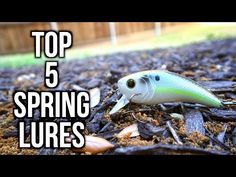 TOP 5 SPRING BASS FISHING LURES 2017 - YouTube