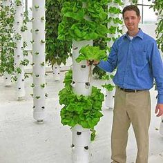 One of my best friends, Tim Blank, and his amazing aeroponic tower gardens <3