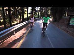 Martha's Vineyard Bike Rentals Bicycle Rental Shop