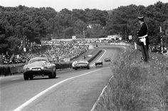 Jaguar E Lightweight Revell - 24 heures du Mans 1964 Sports Car Racing, Road Racing, Auto Racing, Sport Cars, Race Cars, Jaguar Type E, Course Automobile, Le Mans 24, Racing Events