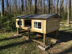 Post with 1833 views. Chicken Coop Rebuild and New Run Box Building, Nesting Boxes, Side Door, Cinder, Chickens Backyard, Coops, Rear View, Funny Jokes, Shed